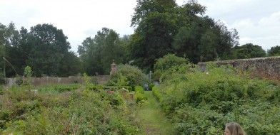 The Walled Garden awaiting transformation...